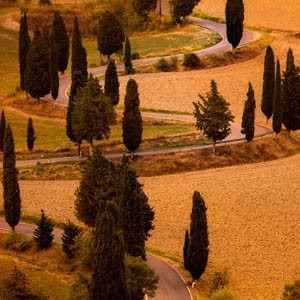 Tuscany Italy Photography Tour and Workshop Preview