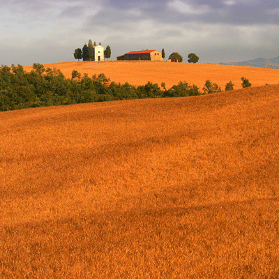 Tuscany and Cinque Terre Photo Workshop Day 3 Tuscany Val d'Orcia